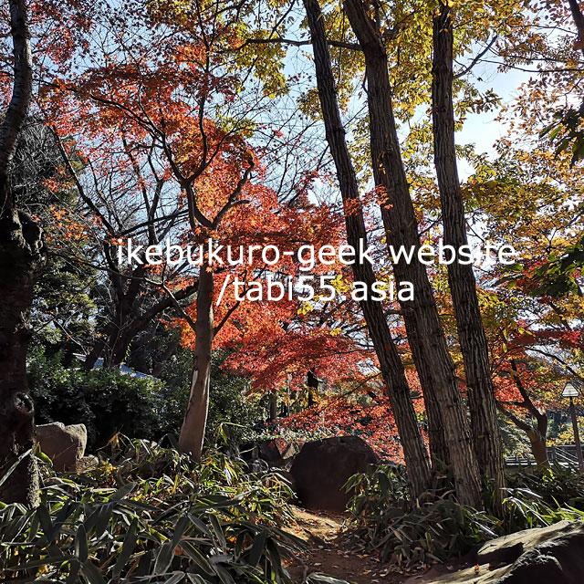 飛鳥山公園を散策しながら、渋沢資料館(事前予約制)へ