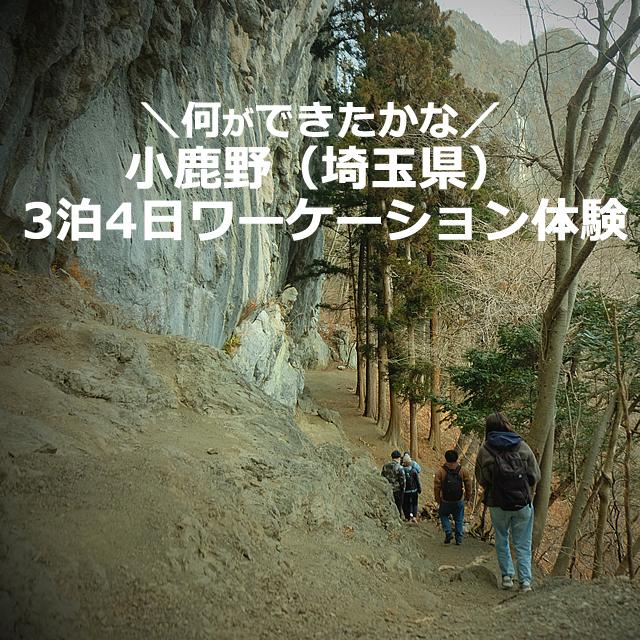 小鹿野(埼玉県)で【3泊4日】ワーケーション体験ツアーに参加してきたよ。