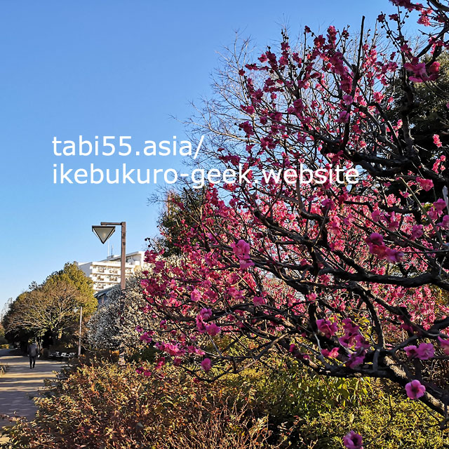上のトキワ荘と一緒に訪問しよう!哲学堂公園【池袋駅からバスで20分強】