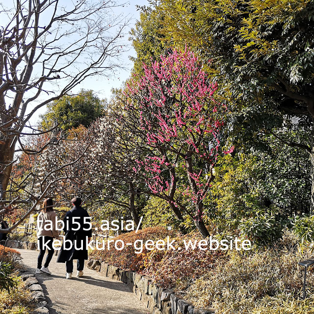 池袋駅から徒歩圏内の日本庭園!目白庭園