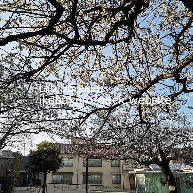 梅×トキワ荘マンガミュージアム