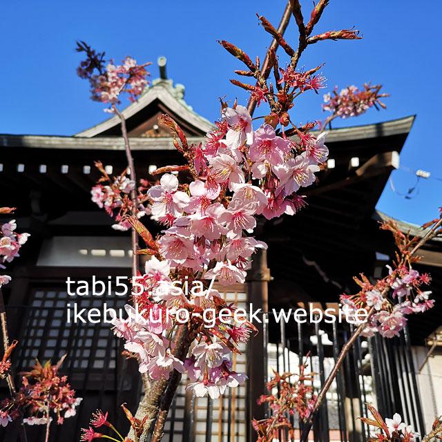 住宅街に佇む粟島神社