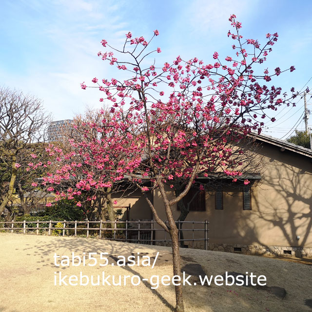 池をまわって約3分!ミニ日本庭園:目白庭園