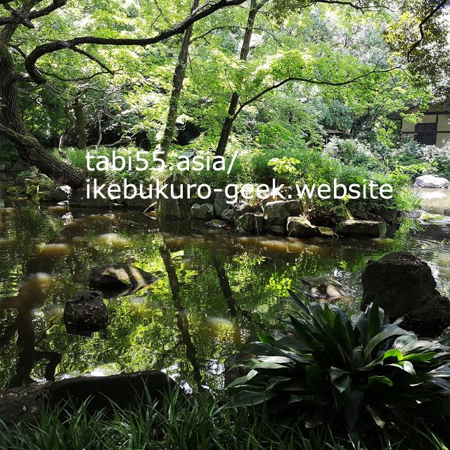 滝もよいけど、池も美しい!名主の滝公園