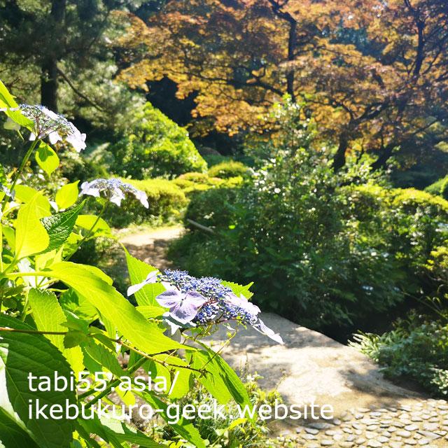 大名屋敷跡につくられた日本庭園!甘泉園(かんせんえん)公園