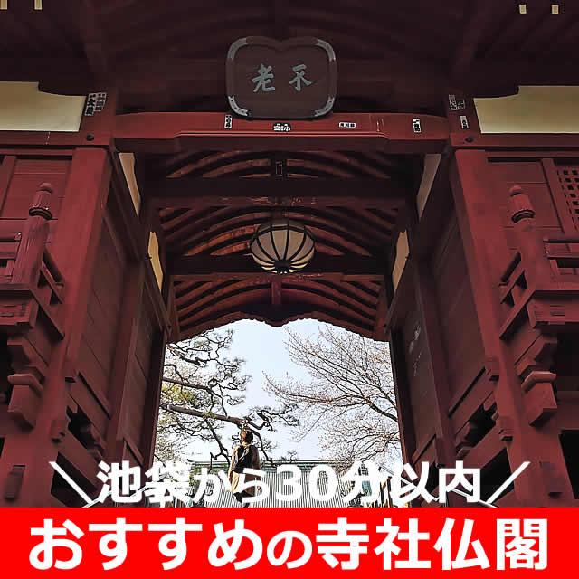 池袋から30分くらい!寺社仏閣おすすめ【11選】